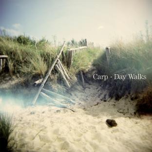 Carp : un talent qui nous laisse sans voix